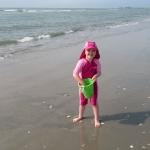 YEAR 4: BEACH COMBING