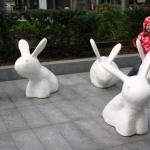 YEAR 6: RABBITS